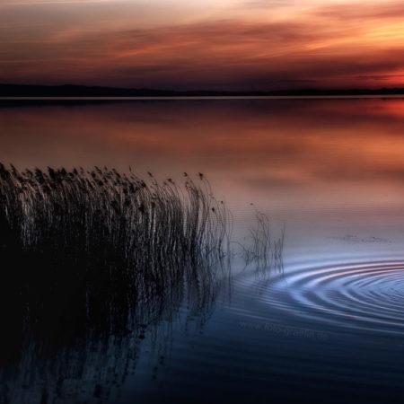 Mecklenburg Vorpommern, Kummerower See, melanie brunzel, foto-graefin, verschmelzung, sonnenuntergang,