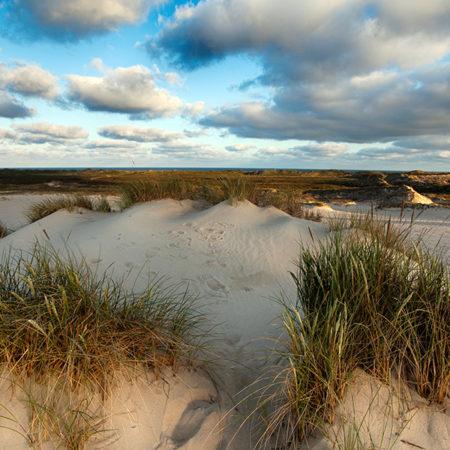 sylt, dünen, sand, morgenlicht, melanie brunzel, foto-graefin,