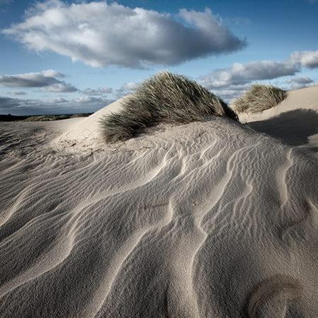 sylt, melanie brunzel, foto-graefin, dünen, sand, struktueren, wind, sommer