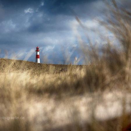 Sylt, Ellenbogen, Landschaft, Melanie Brunzel, Foto-Graefin, Insel,