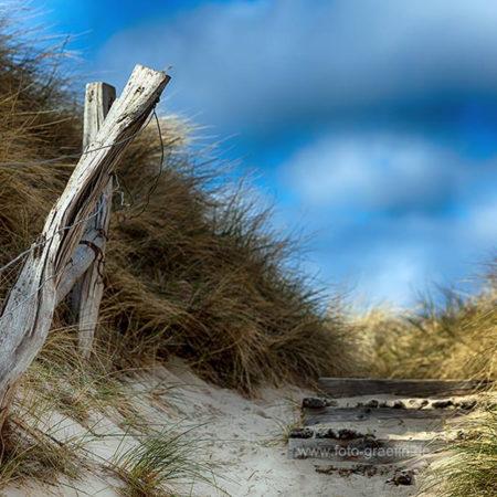 sylt, dünen, weg, meer, sand, strand, melanie brunzel, foto-graefin,